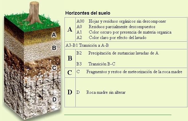 Sin ambiente no hay futuro suelo for Materiales que componen el suelo