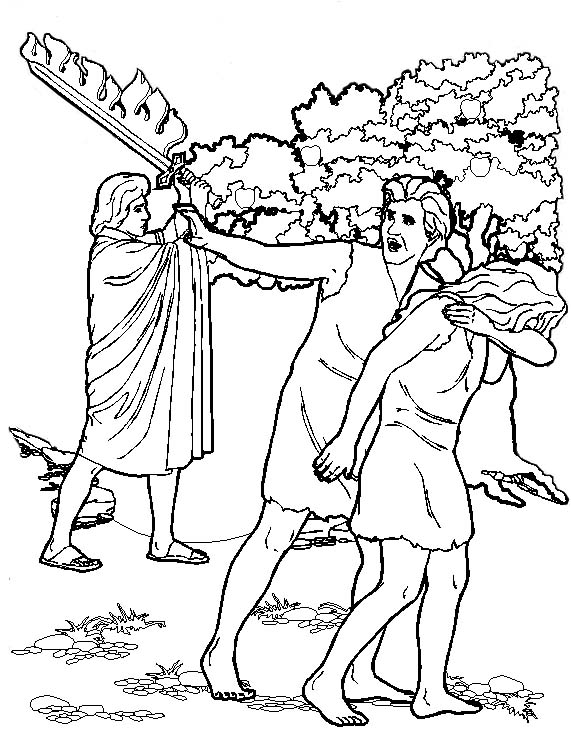 La creacion for Adan y eva en el jardin del eden para colorear