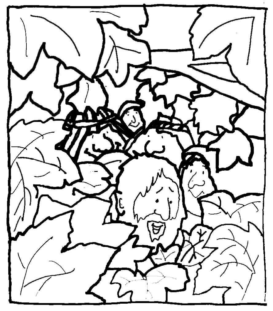 zaqueo coloring pages - photo #15